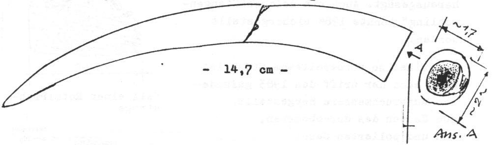 Polierte Verzweigung aus dem unteren Stangenbereich (Rothirsch)
