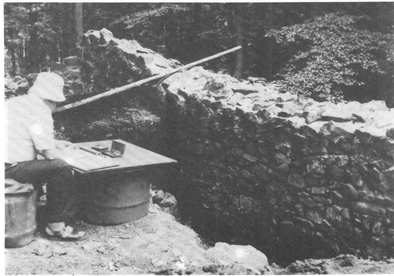 Aufmaß der 1984 freigelegten inneren Schalmauer
